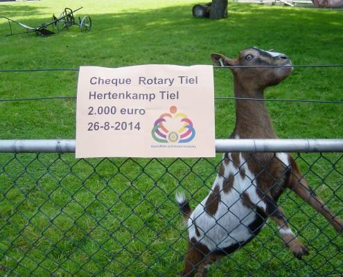 Rotary Tiel Donatie in het Hertenkamp Tiel